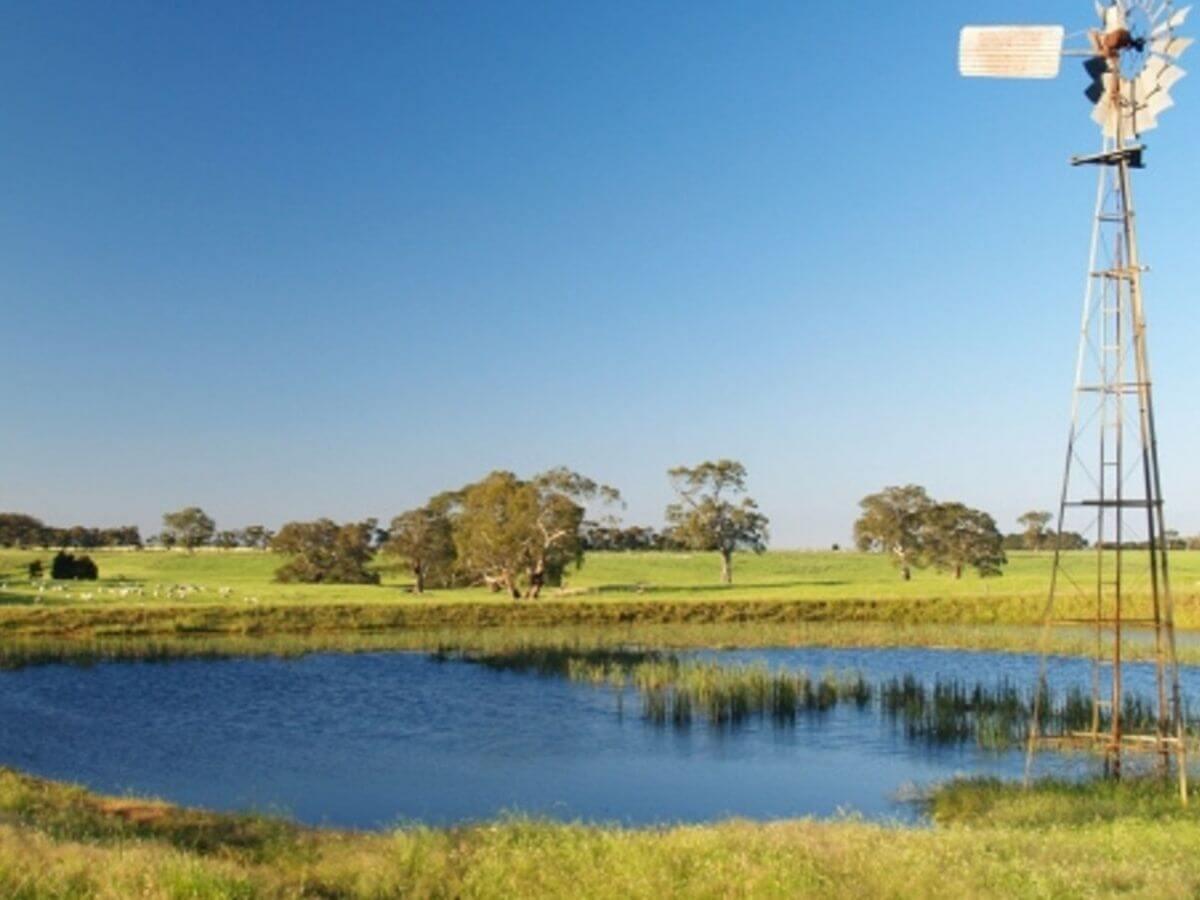 Farm management grant